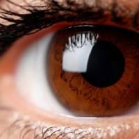 Entenda porque os olhos castanhos são considerados os mais especiais pela ciência